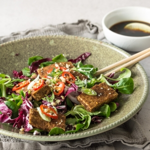 Dry Rub Tofu Salad with Chilli Lime Dressing